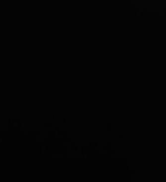Schwarz Vorschaubild